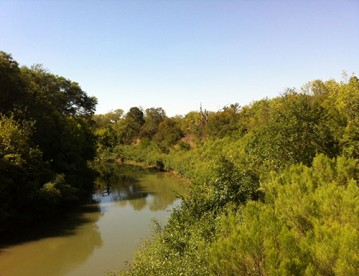 North Texas Wild: River Legacy Parks in Arlington