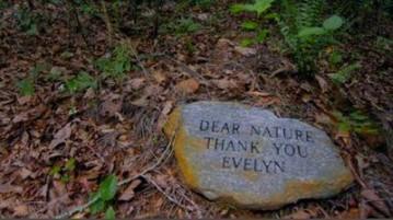 Dallas digs into green burial movement