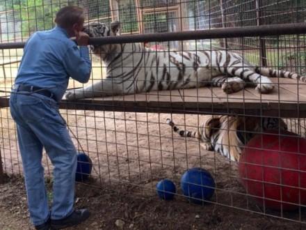 North Texas Wild: Behaviorist provides emotional enrichment for animals at Boyd sanctuary