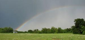 rainbow5_08